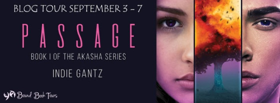 Passage Blog Tour Hosted By YA Bounds Blog Tours